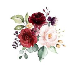 floral illustration, Leaf and buds. Botanic composition for wedding, greeting card. branch of flowers - abstraction roses - Buy this stock illustration and explore similar illustrations at Adobe Stock Watercolour Drawings, Watercolor Flowers, Watercolor Art, Flower Frame, Flower Art, Illustration Blume, Wax Flowers, Burgundy Flowers, Paintings I Love