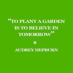 """""""Spring gardens on the brain with this lovely 🌺🌹🌻🌼🌿"""" Perfume Quotes, Spring Garden, Audrey Hepburn, Brain, Gardens, Instagram Posts, The Brain, Outdoor Gardens, Garden"""