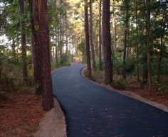 Have you been on the Great Delmarva Bicycling Trail? I must admit I had never heard of it! Looks like a lot of fun - Andrew