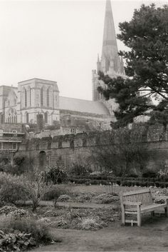 Chichester Cathedral from The Bishops Garden