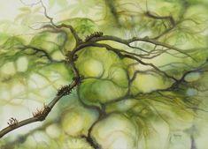 Paintings - Marney Ward SFCA, SCA, Artist
