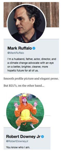 Mark Ruffalo VS Robert Downey Jr