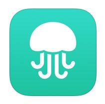 Twitter founder launches question-answering social search Jelly app - NewsCanada-PLUS News, Technology Driven Media Network
