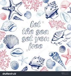 Poster With Seashells, Corals And Starfishes. Marine Background. Travel Flyer…