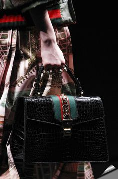 Wonderful bag from Gucci's Fall-Winter 2016.17 collection.
