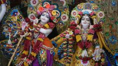 It is obligatory for the neophyte devotees  to be engaged in deity worship.   Even if he has no love of God,  by following the regulative principles and worshiping the deity  he will awaken that dormant love.                                                                                                              -Srila Prabhupada