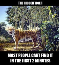 The Hidden Tiger..Difficult to find in 2 minutes
