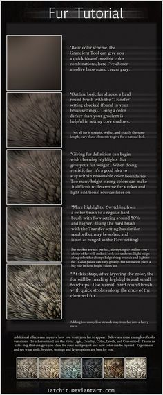 Animal Drawing Fur Tutorial - Animal Drawing Reference - Graphic Software - Great for drawing wolves, foxes and dogs - Digital Painting Tutorials, Digital Art Tutorial, Art Tutorials, Drawing Tutorials, Drawing Techniques, Drawing Tips, Drawing Reference, Drawing Fur, Poses References