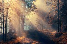 Пейзажи Mehmet Eralp