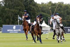11 things to know about polo | LE PAN