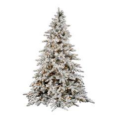 foot Flocked Utica Fir Christmas Tree