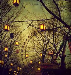 Life's carnival...fireflies light the way, as the wheel goes around, sometimes I'm at the top and sometimes I'm on the ground, but in-between is where I'll mostly be found...
