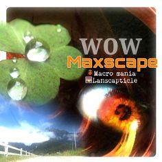 Wow Maxscape
