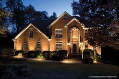 22 Landscape Lighting Ideas Path lights Hydrangea and Beams