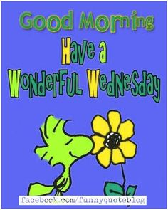 Are you looking for Funny Wednesday Meme? We have perfect collection of Funny Wednesday Memes for you to share with your friends. Good Morning Wishes Gif, Good Morning Snoopy, Good Morning Wednesday, Wonderful Wednesday, Good Morning Happy, Good Morning Friends, Good Morning Greetings, Wacky Wednesday, Funny Wednesday Quotes