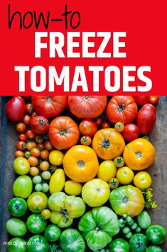 Can I freeze Tomatoes? Yes you can! It is easy to preserve tomatoes in the freezer and we show you how to do it. You then always have fresh tomatoes available for sauce, salsa or to use in whatever recipe you need them for.L Yummy Healthy Snacks, Healthy Meal Prep, Easy Snacks, Freeze Tomatoes, Natural Health Tips, Baking Tips, New Moms, Preserves, Freezer