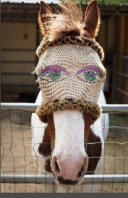 This might freak our other horses out!! LOL