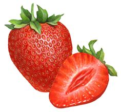 Fruit illustration of a whole strawberry and a sliced strawberry half. Strawberry Tattoo, Strawberry Drawing, Strawberry Slice, Fruit Illustration, Food Illustrations, Fruit And Veg, Fruits And Vegetables, Strawberry Clipart, Marzipan Fruit