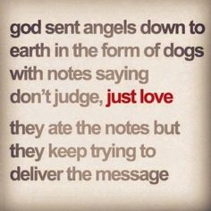 God sent angels down to earth in the form of dogs with notes saying, Dont judge... just love. The dogs ate the notes... but they keep trying to deliver the message.
