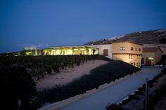 Bodegas Valdubón, enoturismo en la Ribera del Duero, visitas guiadas y cata de vinos