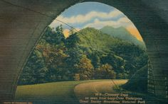 Chimney Tops as seen from loop-over underpass, Great Smoky Mountains National Park