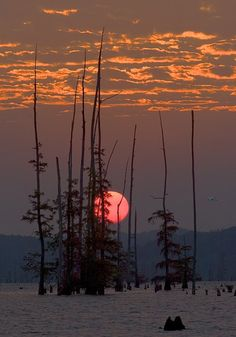 Early Flight by David Hatfield on Capture Arkansas // Egret flys over Lake Conway at sunrise.