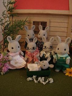 My original Gray Rabbit Family (Babblebrook) from 1986 Christmas gift while living in Japan.