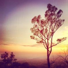 Sunset - Griffith Park, Los Feliz, Los Angeles