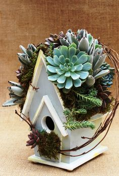"""Looks like she removed the roof and planted the succulents - what a fun idea. """"Mourning Dove-Gray"""" succulent rooftop birdhouse from The Succulent Perch, on facebook"""