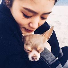 【chibeeeats】さんのInstagramをピンしています。 《帰国した。  海に来た。  花もらった。  風邪引いた。  #悪寒#鼻汁過多#海#teto#マヌケ犬🐕》