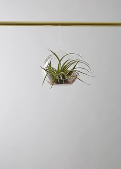 Very cool 70's style planter from Geo Fleur shop now at ohwhatsthis.com #shop #interiors #planters #plant #airplant #hangingplanters #homewares #ohwhatsthis