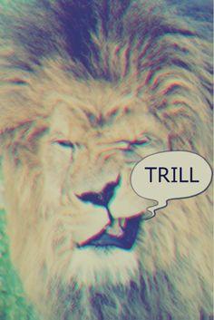 king of da jungle. thug life.