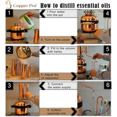Essential oil distiller kit for making essential oils ► Complete kit with everything you need. Special price for interested clients ► Zoom in on the image Essential Oil Still, Making Essential Oils, Essential Oil Distiller, Copper Still, Steam Distillation, How To Make Oil, Health Shop, Water Pipes, Health
