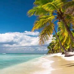 One of the most magic places on Earth is a island beach that is small. This tiny green swath of land is my idea of paradise with brilliant beaches, warm water, and lush vegetation. Beautiful Places To Travel, Beautiful Beaches, Beautiful World, Romantic Travel, Beach Pictures, Nature Pictures, Amazing Pictures, Beach Video, Beach Wallpaper