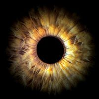 Richie Hawtin B2B Dubfire - Enter Week 10 Part 1 by IBZ MUSIC (Official) | Free Listening on SoundCloud