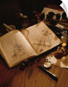 Herbs: Creating a Materia Medica ( Notebook) (Sabrina's Witchy Wonderland). Witch Aesthetic, Brown Aesthetic, Journal Aesthetic, Aesthetic Vintage, Paradis Sombre, Book Of Shadows, Witchcraft, Wiccan, Light In The Dark