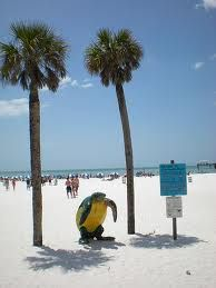 Clearwater, Florida- used to live there just wish I had been a little older. Florida Vacation, Florida Travel, Vacation Spots, Vacation Destinations, Vacation Rentals, Vacation Ideas, Places Around The World, Oh The Places You'll Go, Around The Worlds