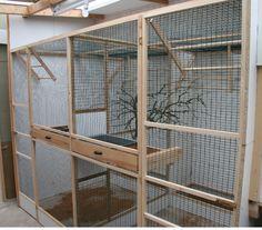 indoor bird aviary designs