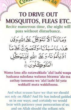 Mosquito machchhar bhagao Muslim Love Quotes, Religious Quotes, Islamic Quotes, Duaa Islam, Islam Hadith, Islam Quran, Quran Surah, Allah Islam, Prayer Verses