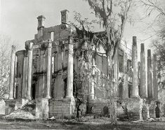 Belle Grove Plantation – White