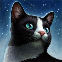 warrior cats pics | My Warrior Cats Pictures: Black and white warrior cat