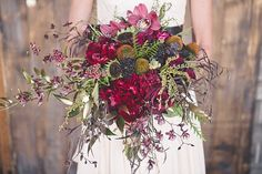 Colorado Wedding Ins