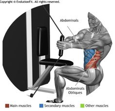 ABDOMINALS -  TORSION KNEE CABLE MACHINE