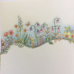 Take a peek at this great artwork on Johanna Basford's Colouring Gallery! Enchanted Forest Book, Enchanted Forest Coloring Book, Secret Garden Colouring, Johanna Basford Coloring Book, Rainbow Flowers, Outline Drawings, Coloring Book Pages, Flower Art, Artwork