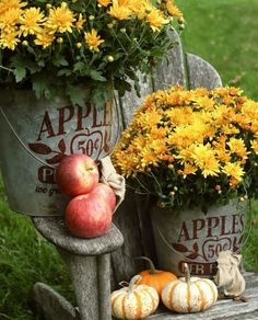 Apples, pumpkins, and stenciled galvanized buckets filled with mums