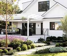 Cloud pruning elevates this Australian-style Hamptons garden — Homes to Love Australian Garden Design, Australian Homes, Hamptons House, The Hamptons, Cloud Pruning, Front Yard Garden Design, Hampton Garden, Facade House, House Facades