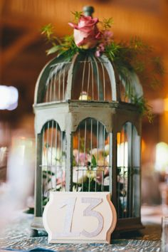 One of Three Centerpieces for the Lovebirds Themed Wedding | Emily & Steven Photo By Ryan Zarichnak Photographyy