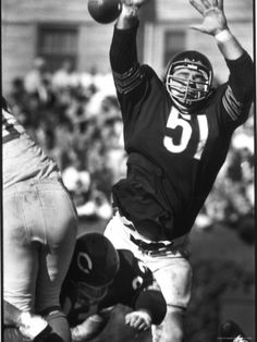 Football  Chicago Bears Dick Butkus  51 in Action 7bb0dcbf4311