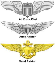 "I don't know, but it's been said, Air Force Wings are made of Lead. I don't know, but I've been told, Navy Wings are made of Gold!"" Happy Birthday U. Illustration Avion, Air Force Medals, Badges, Pilot Uniform, Naval Aviator, Patriotic Images, Military Drawings, Army Patches, Indian Air Force"