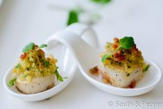 Coquille met crumble van walnotenpesto - South and Pepper !